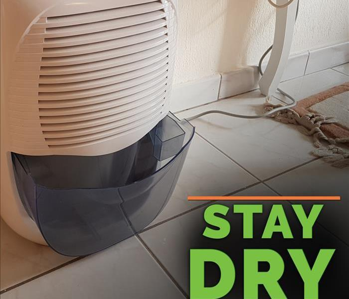 Dehumidifier with the words STAY DRY